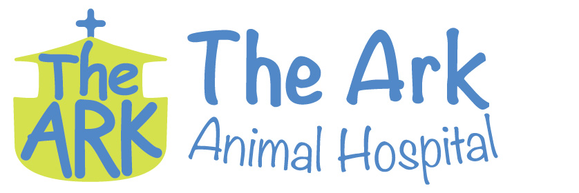 Image of: Veterinary Clinic The Ark Animal Hospital Expert Caring Veterinary Pet Care Palmerston The Ark Animal Hospital Palmerston Nt Veterinarian The Ark Animal Hospital Expert Caring Veterinary Pet Care